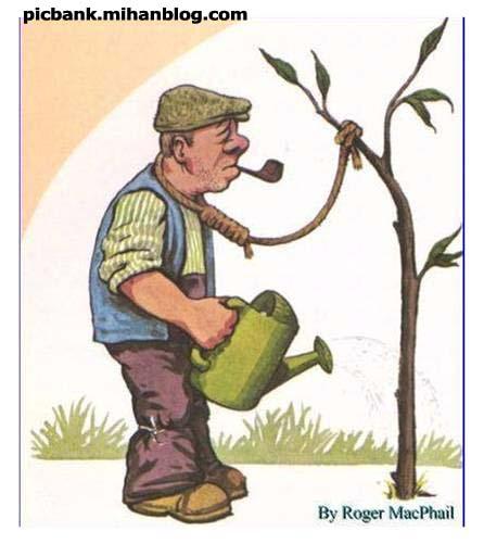 خودکشی | نهال | درخت مرگ | خودکشی با طناب دار | عکس | عکسهای زیبا | کاریکاتور | کارتون | کارتونهای زیبا | کاریکاتورهای زیبا | کاریکاتور کلاسیک | درخت | باغبان | خودکشی باغبان | کاریکاتورهای زیبای کلاسیک | کاریکاتور خودکشی | طناب دار | مار در آستین پروردن | کاریکاتور مار در آستین پروردن | مار در آستین نگه داشتن | کاریکاتورهای معروف | کاریکاتور مشهور | کاریکاتور اجتماعی | طنز اجتماعی | نقاشی | کاریکاتور معنادار | کارتونیست | کاریکاتوریست | کاریکاتوریستهای معروف | کاریکاتورهای پر معنی | نقاشی های معنا دار | عکس های معنادار | معنا دار | عکسهای پرمعنی | بامعنی | با معنی | با معنا | تصویر زیبا | تصاویر معنا دار | تصاویر زیبا | نگارخانه | آرشیو عکس و تصویر | پیک بانک | پیکبانک |