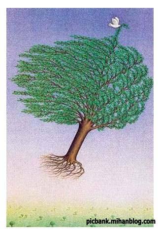 صلح | پرنده صلح | عکس | عکسهای زیبا | کاریکاتور | کارتون | کارتونهای زیبا | کاریکاتورهای زیبا | کاریکاتور کلاسیک | زیتون | سمبل صلح | شاخه زیتون | درخت زیتون | کاریکاتورهای زیبای کلاسیک | کاریکاتور صلح | صلح و دوستی | کبوتر سفید | کبوتر سپید | صلح جهانی | صلح بشر | کاریکاتورهای معروف | کبوتر پیام آور صلح | نشان صلح | پیام آور صلح و دوستی | نشانه صلح | کاریکاتور مشهور | کاریکاتور اجتماعی | طنز اجتماعی | نقاشی | کاریکاتور معنادار | کارتونیست | کاریکاتوریست | کاریکاتوریستهای معروف | کاریکاتورهای پر معنی | نقاشی های معنا دار | عکس های معنادار | معنا دار | عکسهای پرمعنی پر معنی | بامعنی | با معنی | با معنا | تصویر زیبا | تصاویر معنا دار | تصاویر زیبا | نگارخانه | آرشیو عکس و تصویر | پیک بانک | پیکبانک |