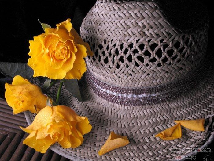 عکس ، عکس زیبا ، عکس های زیبا ، عکسهای زیبا ، کلاه ، کلاه حصیری ، کلاه زنانه ، کلاه خانمها ، کلاه خانم ها ، کلاه برای خانم ها ، کلاه گل دار ، کلاه با گل ، حصیر ، گل ، گل رز ، رز ، رز زرد ، عکس گل ، عکس رز ، عکس گل رز ، گلهای رز ، عکس رز زرد ، گل رز زرد ، عکس گل رز زرد ، عکس گل رز ، عکس های گل رز ، سیاه سفید ، عکس سیاه سفید ، سیاه و سفید ، عکس سیاه و سفید ، نقاشی ، مدل نقاشی ، مدل برای نقاشی ، کلاههای حصیری ، کلاه های حصیری ،